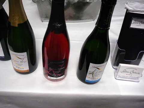 Champagne Fabrice Bertemès, Trépail